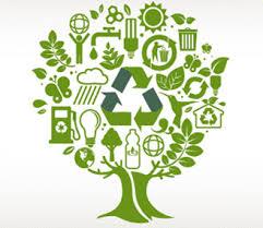 ¿Sabemos reciclar correctamente?