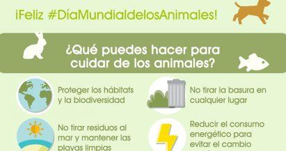 Día Mundial de los Animales: Cuidando del entorno, cuidas de ellos