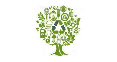 Los colores del reciclaje: aprende cómo reciclar mejor